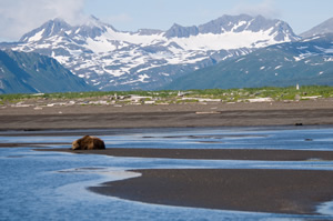 Is Alaska Your Next Holiday Destination? Here Is The Best Travel Guide